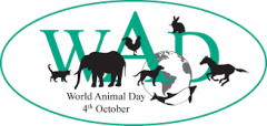 Doprinos zaštite prava životinja nenasilju